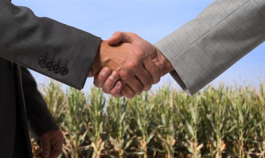 Порядок оформления земельного участка (в т.ч. купли продажи). Как оформить?